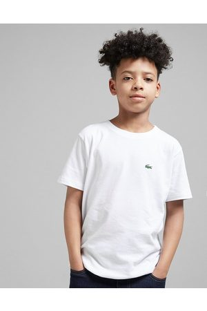 Lacoste Small Logo T-Shirt Junior - Only at JD, White