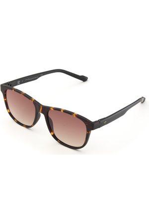 adidas AOR031 Solglasögon