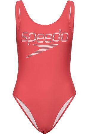 Speedo Stripe Logo Deep U-Back 1 Piece Baddräkt Badkläder