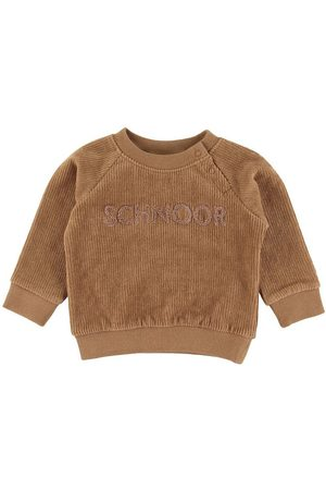 PETIT by Sofie Schnoor Pojke Sweatshirts - Sweatshirt - Alfred - Dusty Brown