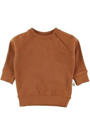 Soft Gallery Sweatshirts - Sweatshirt - Alexi - Pumpkin Spice