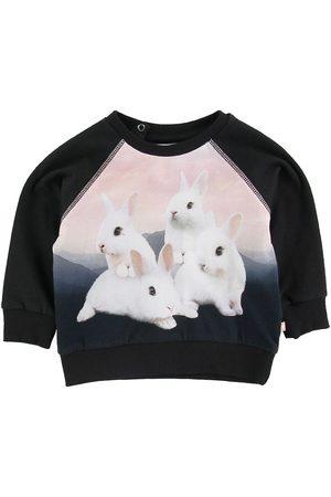 Molo Flicka Sweatshirts - Sweatshirt - Elsa - White Bunnies
