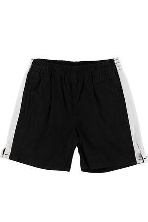 Molo Shorts - Anchor