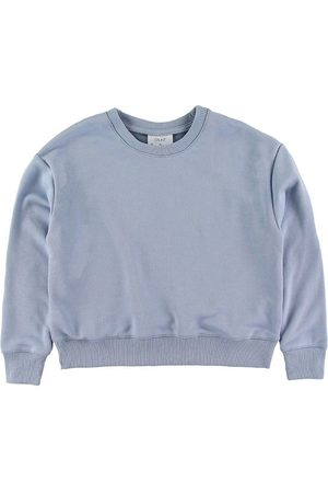 Grunt Sweatshirt - Lone - Baby Blue