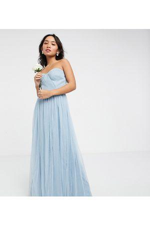 Anaya Petite Anaya With Love Petite – Ljusblå maxiklänning i tyll med bandeau för brudtärnor