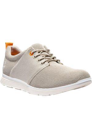 Timberland Pojke Sneakers - Men's Killington Flexiknit Oxford