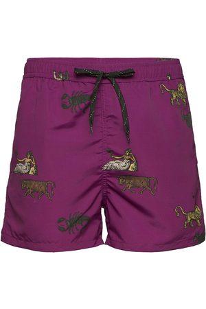 Soulland Man Shorts - William Shorts Shorts Casual