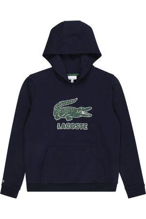 Lacoste Pojke Sweatshirts - Sweatshirt