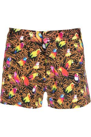 AMIR SLAMA Man Badshorts - Papagaios shorts med tryck