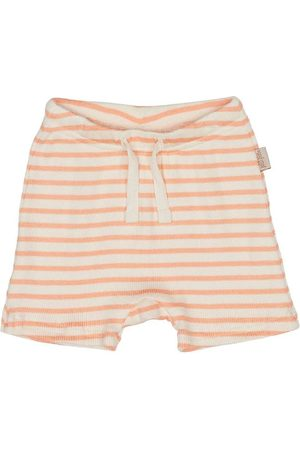 Petit Piao Shorts - Modal Striped - Peach Naught/Eggnog