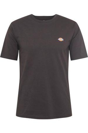 Dickies T-shirt 'MAPLETON