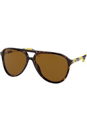 Polo Ralph Lauren PH4173 Polarized Solglasögon