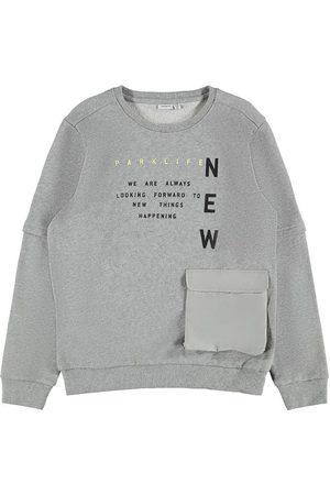 NAME IT Pojke Sweatshirts - Sweatshirt - NkmDanas - Grey Melange