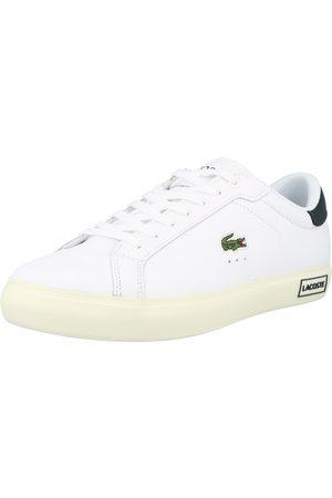 Lacoste Låg sneaker 'Powercourt