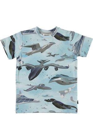 Molo T-shirt - Ralphie - Biomimicry
