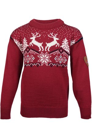 Dale of Norway Dale Christmas Kids' Sweater