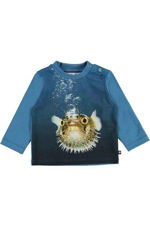 Molo Pojke Tröjor - Tröja - Enovan - Pufferfish