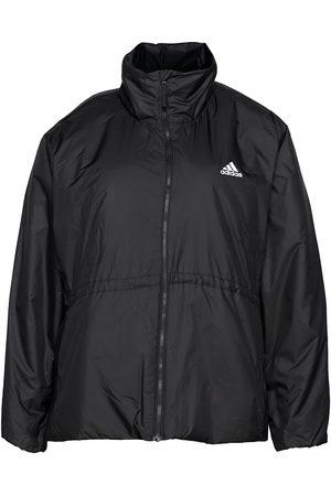 adidas Kvinna Vinterjackor - Bsc 3-Stripes Insulated Winter Jacket W Outerwear Sport Jackets