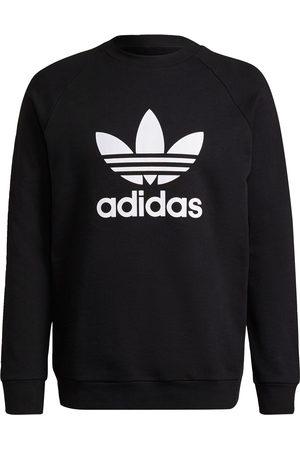 adidas Man Sweatshirts - Sweatshirt