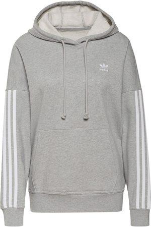 adidas Kvinna Sweatshirts - Sweatshirt