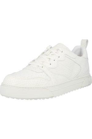 Michael Kors Man Sneakers - Låg sneaker 'BAXTER