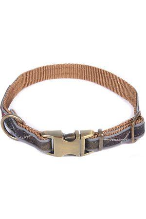 Barbour Man Sjalar - Reflex Dog Collar