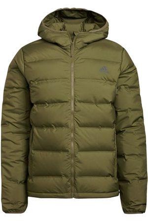 adidas Men's Helionic Down Hooded Jacket